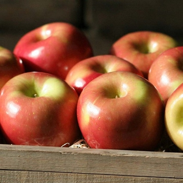 Red Delicious Apples - 1 lb.