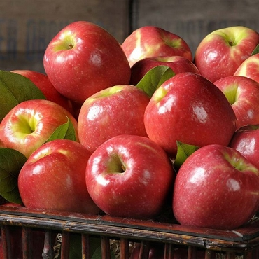 Honey Crisp Apples - 1 lb.